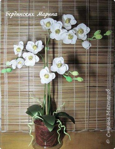 Мастер-класс по созданию прекрасной орхидеи с конфетами. фото 11