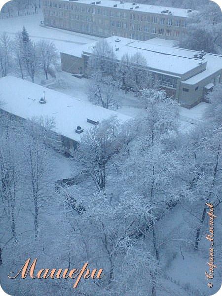 В глазах грусть и растерянность. И это - несмотря на красоту, хрупкость и изящность образа.  Его полное имя - Зимний день в Донецке 13 января 2015г. фото 2