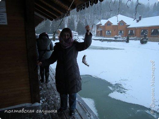 На 50-летний юбилей мужа, я подарила ему путевку на новогодние праздники в Карпаты, естественно на два человека ,т.е на него и себя)).Приехали мы в Прикарпатье 30 декабря утром. Вот такой красотой нас встретили горы. фото 6