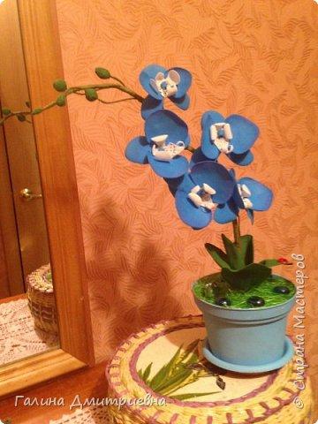 Добрый вечер жители Страны Мастеров! Вот такую орхидею я сотворила впервые.  Затем дочери моей понравилась и она заказала большую орхидею. Вторая  уже получилась получше. Мне она очень понравилась, я думаю Вам она тоже понравится.    фото 1