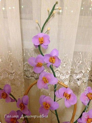 Добрый вечер жители Страны Мастеров! Вот такую орхидею я сотворила впервые.  Затем дочери моей понравилась и она заказала большую орхидею. Вторая  уже получилась получше. Мне она очень понравилась, я думаю Вам она тоже понравится.    фото 6