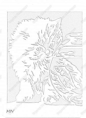 Котёнок+шаблон фото 4
