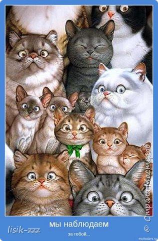 """Здравствуйте все-все -все мои  самые хорошие, замечательные и талантливые!!! Это вторая, и, надеюсь. не последняя часть моей котомании.  Не очень длинная, совсем не поучительная, но временами,-  все таки смеятельная. Смеяться после слова """"кошка""""  (повторять я его, судя по теме, буду часто и если вы честно выполните мою рекомендацию, пара улыбок в выходной вам обеспечена)))). Все знают, что  я люблю кошек... Еще я люблю собак, слонов, тигров. хомячков (один из них явно мой близкий родственник), пингвинов, мишек...  В общем, чтобы не пересказывать энциклопедию животных , уточню: люблю я почти всех. Но к кошкам у меня особая любовь: поскольку я живу с одной из них, кошколюбовь - это, так сказать, вопрос выживания.....  фото 2"""