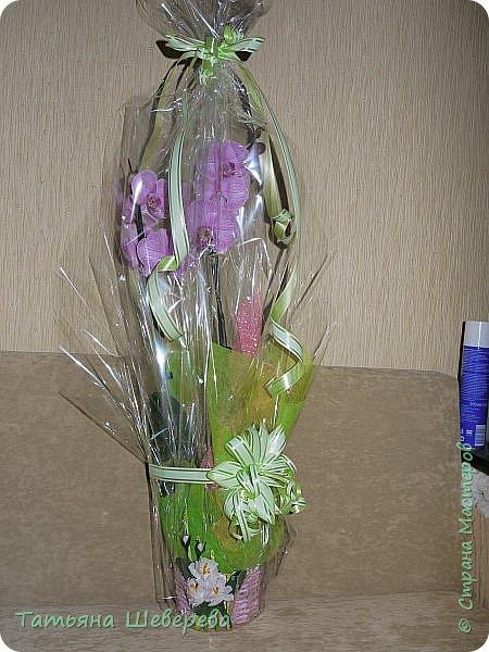 """В 2014 году сын пошел во второй класс и я решила - а что мне стоит самой изобразить букет на 1-е сентября?! :)) Но, честно говоря, мне жаль срезанные цветы и я не слишком люблю букеты в итоге - радости много, конечно, но только на неделю максимум... Посему было решено дарить более долговечную версию букета: орхидею в горшке. Ну а поскольку горшки у магазинных орхидей не блещут красой (корням нужен свет), а мы не ищем легких путей... Я давненько засматривалась на газетные плетенки мастериц из СМ, а тут - и повод и идея! :) Отпуск, опять же, взятый перед началом школьного года...  Итак, была выбрана чудесная большущая орхидея (я их большая поклонница вообще в последнее время, ибо они у меня единственные цветы, которые мало того, что почти все выживают, да при этом еще и цветут!) :)) Я накрутила трубочек, предварительно сверившись с кучей МК, и начала плести кашпо. Потом его покрасила в множество слоев разных красок, добиваясь нужного оттенка (к слову, так и не до конца подошедшего), покрыла лаком на водной основе (какой был на тот момент), сбоку прилепила несколько кусочков веточек, окрашенных в салатовый цвет, и бумажные цветы из гофробумаги (я их только-только научилась делать :)). Украсила стразами-росинками и упаковала в купленный по случаю (за случаем ездили с мужем во флористический магазин на другой конец Москвы, где купила еще мнооого всякого """"абсолютно необходимого в жизни"""" :)))) ) полиэтилен. Банты накрутила как смогла, салатовая и розовая флористическая упаковка осталась от букетов (хомякоз - страшнючая болезнь, а они красииивые быыли :) ) фото 1"""