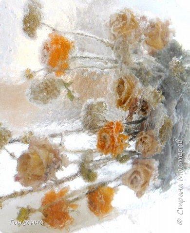 Необычная выставка цветов  прошла в дни новогодних праздников в Павловском парке под Петербургом фото 11