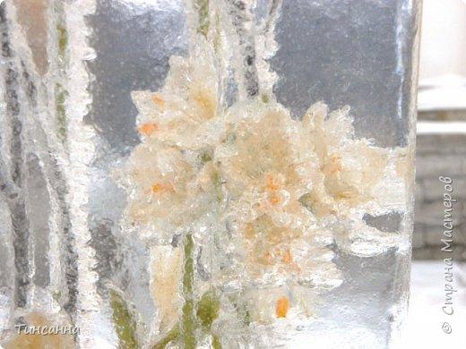 Необычная выставка цветов  прошла в дни новогодних праздников в Павловском парке под Петербургом фото 21