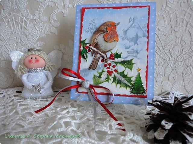 Открыточки новогодние по просьбе одной милой девушки. Ей надо было простенькие и похожие. Сначала сделался вот этот снегирь. Потом похожих не получилось и я начала все сначала, так что снегирь остался в одиночестве.  фото 1