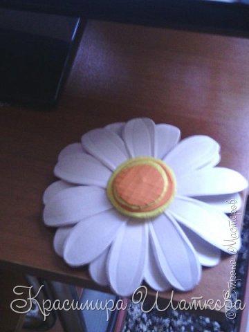Маргарита-ромашка фото 2