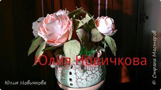 Вот такое чудо живет теперь и у меня. Огромное спасибо, Оле Сыротюк. (Мастер класс по созданию очаровательного чуда в горшочке... 6 ноября, 2014 - 01:37 ~ Сафинка )  фото 1