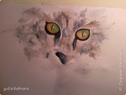 Акварельный кот:) фото 1