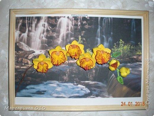 Добрый день! Я настолько восхищена цветами Анастасии Бертовой, что не могла не попробовать создать что-то похожее. Представляю вашему вниманию ветку орхидеи. Работа немного не доделана. Буду делать углубленную рамку, сделаю листы, чтобы не была голой ветка, уберу белые поля. Но пока не терпится показать цветы. фото 1