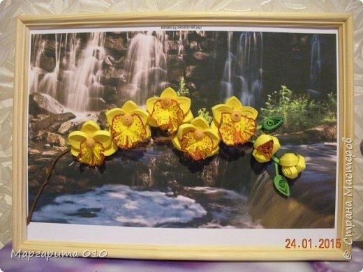 Добрый день! Я настолько восхищена цветами Анастасии Бертовой, что не могла не попробовать создать что-то похожее. Представляю вашему вниманию ветку орхидеи. Работа немного не доделана. Буду делать углубленную рамку, сделаю листы, чтобы не была голой ветка, уберу белые поля. Но пока не терпится показать цветы. фото 2