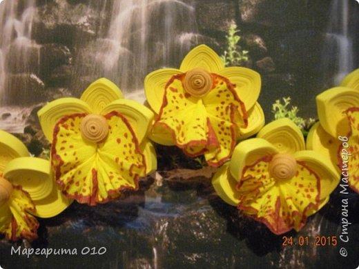 Добрый день! Я настолько восхищена цветами Анастасии Бертовой, что не могла не попробовать создать что-то похожее. Представляю вашему вниманию ветку орхидеи. Работа немного не доделана. Буду делать углубленную рамку, сделаю листы, чтобы не была голой ветка, уберу белые поля. Но пока не терпится показать цветы. фото 3