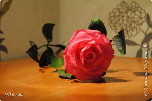 Роза. Керамическая флористика. фото 1