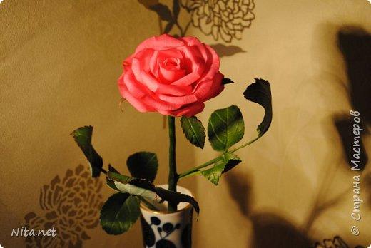 Роза. Керамическая флористика. фото 2