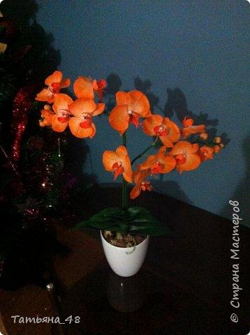 Привет Страна! Поздравляю всех Татьян с нашим днем..... Вот как и обещала снова я и снова с орхидеей, на этот раз с фантазийной..... Учла предыдущие коментария и сделала середку поярче. Цвет для такого вида орхидеи конечно в природе не существует, но заказщице и мне нравится. Настроение поднимается глядя на цветок..... фото 3