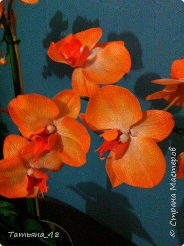 Привет Страна! Поздравляю всех Татьян с нашим днем..... Вот как и обещала снова я и снова с орхидеей, на этот раз с фантазийной..... Учла предыдущие коментария и сделала середку поярче. Цвет для такого вида орхидеи конечно в природе не существует, но заказщице и мне нравится. Настроение поднимается глядя на цветок..... фото 4