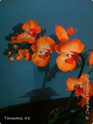 Привет Страна! Поздравляю всех Татьян с нашим днем..... Вот как и обещала снова я и снова с орхидеей, на этот раз с фантазийной..... Учла предыдущие коментария и сделала середку поярче. Цвет для такого вида орхидеи конечно в природе не существует, но заказщице и мне нравится. Настроение поднимается глядя на цветок..... фото 5
