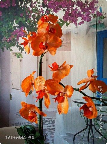 Привет Страна! Поздравляю всех Татьян с нашим днем..... Вот как и обещала снова я и снова с орхидеей, на этот раз с фантазийной..... Учла предыдущие коментария и сделала середку поярче. Цвет для такого вида орхидеи конечно в природе не существует, но заказщице и мне нравится. Настроение поднимается глядя на цветок..... фото 7