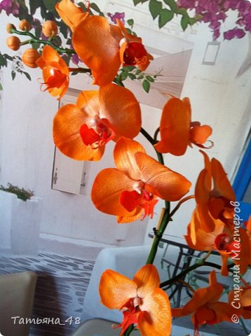 Привет Страна! Поздравляю всех Татьян с нашим днем..... Вот как и обещала снова я и снова с орхидеей, на этот раз с фантазийной..... Учла предыдущие коментария и сделала середку поярче. Цвет для такого вида орхидеи конечно в природе не существует, но заказщице и мне нравится. Настроение поднимается глядя на цветок..... фото 8