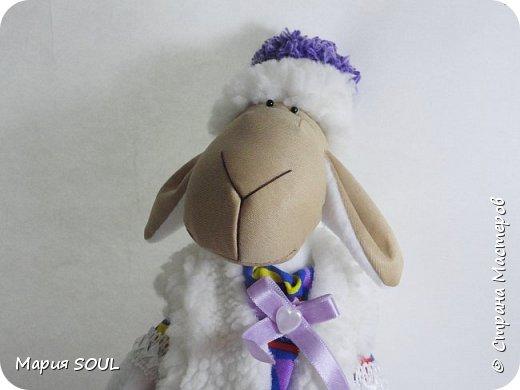 Здравствуйте! У меня снова овечка... фото 3