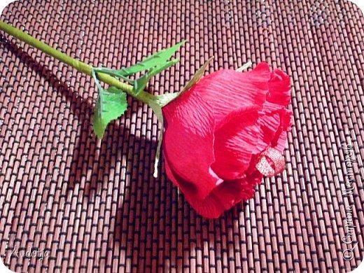 Добрый день всем! Впереди снова череда праздников - День Св.Валентина, 23 февраля, 8 марта. Вот и меня уже понемногу озадачивают, чтобы сделала чего-нибудь к праздникам. Так вот, мелкому племяшу в сад захотелось подарить девочкам подарки на валентинов день. И так как шоколадные конфеты в садике под запретом, решили дарить чупики в виде роз. И все бы ничего, но куда девать леденцовую палочку? Выход был найден! Ниже я расскажу вам как из чупса сделать розу. На мастер-класс моя заметка, конечно, не тянет. Так - идейка. фото 12