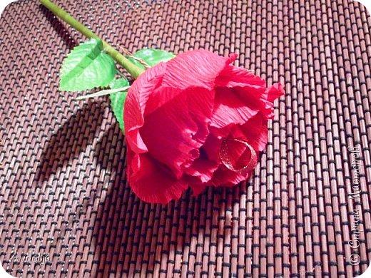 Добрый день всем! Впереди снова череда праздников - День Св.Валентина, 23 февраля, 8 марта. Вот и меня уже понемногу озадачивают, чтобы сделала чего-нибудь к праздникам. Так вот, мелкому племяшу в сад захотелось подарить девочкам подарки на валентинов день. И так как шоколадные конфеты в садике под запретом, решили дарить чупики в виде роз. И все бы ничего, но куда девать леденцовую палочку? Выход был найден! Ниже я расскажу вам как из чупса сделать розу. На мастер-класс моя заметка, конечно, не тянет. Так - идейка. фото 1