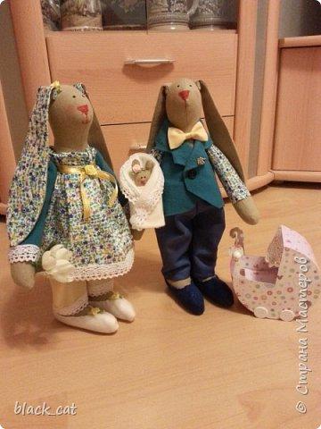 Семейство зайцев фото 2