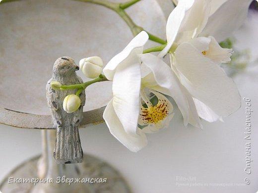 Орхидеи фаленопсис из холодного фарфора фото 6