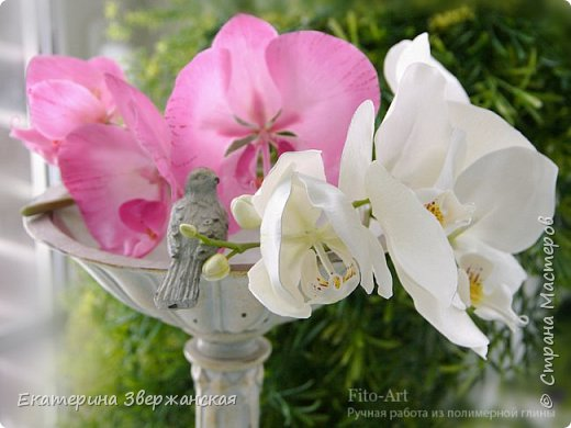 Орхидеи фаленопсис из холодного фарфора фото 7