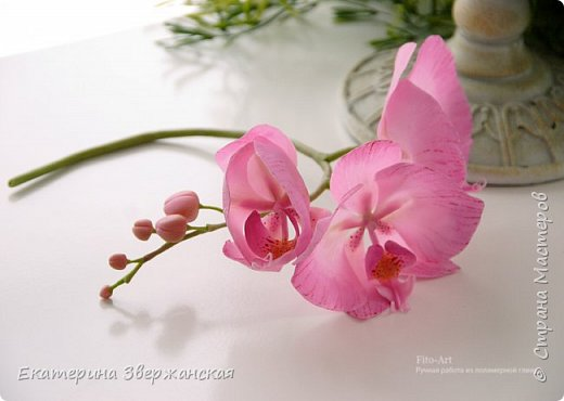 Орхидеи фаленопсис из холодного фарфора фото 10