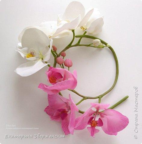 Орхидеи фаленопсис из холодного фарфора фото 13