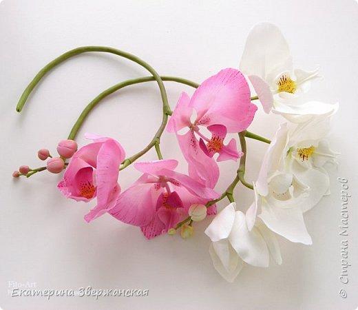 Орхидеи фаленопсис из холодного фарфора фото 16