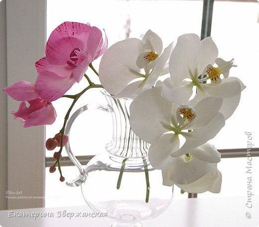 Орхидеи фаленопсис из холодного фарфора фото 18