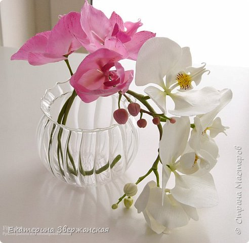 Орхидеи фаленопсис из холодного фарфора фото 21