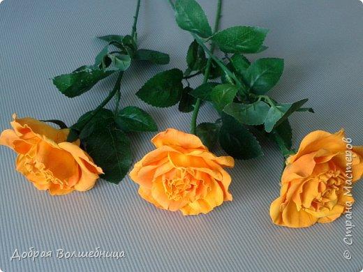 """Здравствуйте, дорогие гости!  Мне повезло попасть на МК по фоамирану. Очень важно потрогать материал, задать кучу вопросов в """"живую"""". И вот результат, вчера весь вечер делала лепесточки, а сегодня собрала цветы. Стебелечки ждали давно ( остались от шоколадных роз) и наконец-то обрели достойные цветы.  фото 3"""