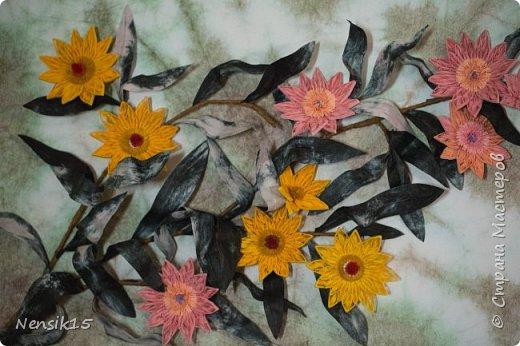 С вой долгий застойный период  решила  Вас порадовать весенними цветами.  Любуйтесь! Скоро весна !! фото 2