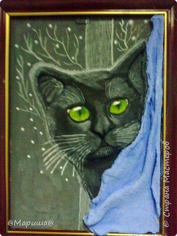 Котик на фоне окна фото 2