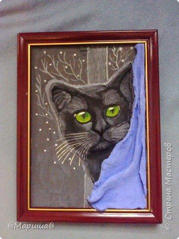 Котик на фоне окна фото 1