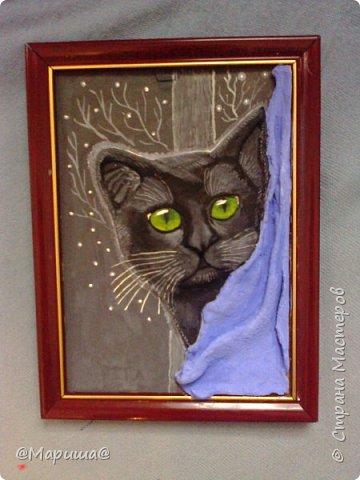 Котик на фоне окна фото 3