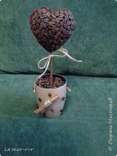 Представляю мои первые кофейные топиарии. Делала как подарки к Новому году. Честно говоря, намучилась я с ними))). Уж очень кропотливая работа. Итак, за основу брала готовые пенопластовые шары и сердце. Обклеивала в 2 слоя. Первый слой бороздками вниз, второй -вверх.   Стволики делала из веточек яблони. Их отчищала от коры, сушила, красила коричневым акрилом, а потом делала смесь из молотого кофе и клея и покрывала ствоилки на пару раз. фото 1