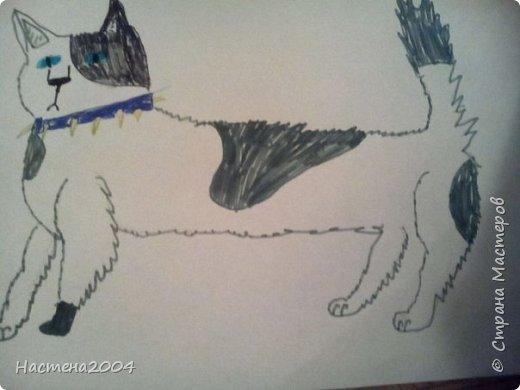 Кот из котов воителей Звездоцап. Все рисунки нарисованы карандашами и фломастерами. фото 6