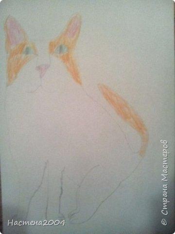 Кот из котов воителей Звездоцап. Все рисунки нарисованы карандашами и фломастерами. фото 18