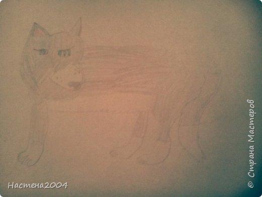 Кот из котов воителей Звездоцап. Все рисунки нарисованы карандашами и фломастерами. фото 19