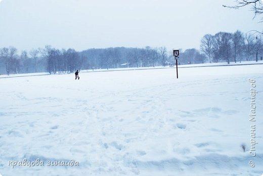 ДОБРЫЙ ДЕНЬ , решила погулять по моему любимому парку , был сильнейший снегопад и пасмурно , но меня понесло,  погуляла  , пофотографировала,  посмотрела на снимки и решила их как то оживить , надо когда - то учиться и работать в фотошопе! и стала редактировать , изменила освещенность, контрастность  цвет , тени , ну и т. д. и получились вот такие фото.   фото 3
