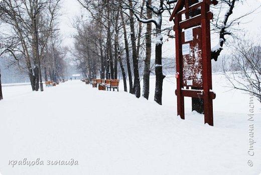 ДОБРЫЙ ДЕНЬ , решила погулять по моему любимому парку , был сильнейший снегопад и пасмурно , но меня понесло,  погуляла  , пофотографировала,  посмотрела на снимки и решила их как то оживить , надо когда - то учиться и работать в фотошопе! и стала редактировать , изменила освещенность, контрастность  цвет , тени , ну и т. д. и получились вот такие фото.   фото 1