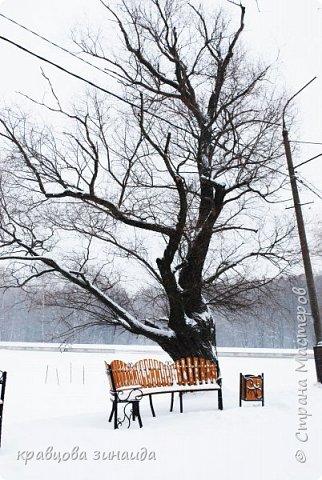ДОБРЫЙ ДЕНЬ , решила погулять по моему любимому парку , был сильнейший снегопад и пасмурно , но меня понесло,  погуляла  , пофотографировала,  посмотрела на снимки и решила их как то оживить , надо когда - то учиться и работать в фотошопе! и стала редактировать , изменила освещенность, контрастность  цвет , тени , ну и т. д. и получились вот такие фото.   фото 17