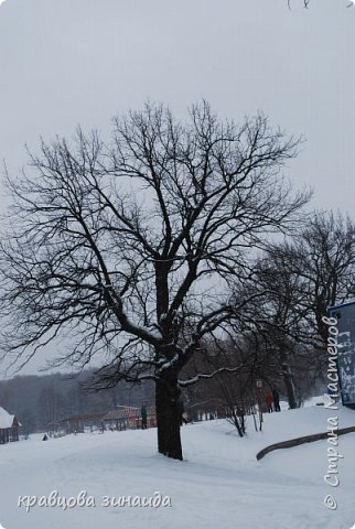 ДОБРЫЙ ДЕНЬ , решила погулять по моему любимому парку , был сильнейший снегопад и пасмурно , но меня понесло,  погуляла  , пофотографировала,  посмотрела на снимки и решила их как то оживить , надо когда - то учиться и работать в фотошопе! и стала редактировать , изменила освещенность, контрастность  цвет , тени , ну и т. д. и получились вот такие фото.   фото 18