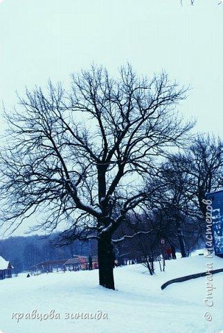 ДОБРЫЙ ДЕНЬ , решила погулять по моему любимому парку , был сильнейший снегопад и пасмурно , но меня понесло,  погуляла  , пофотографировала,  посмотрела на снимки и решила их как то оживить , надо когда - то учиться и работать в фотошопе! и стала редактировать , изменила освещенность, контрастность  цвет , тени , ну и т. д. и получились вот такие фото.   фото 5