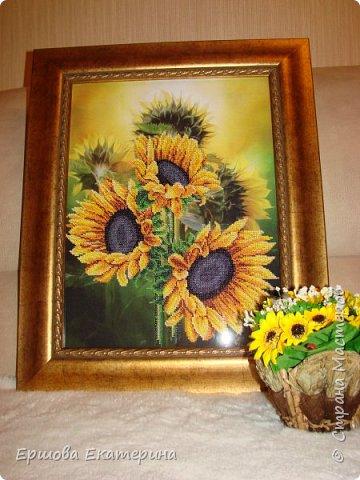Картина бисером, частичная вышивка, с нанесенным рисунком на канву. Производитель Украина Картины бисером. Готовая работа получилась внушительных размеров. Размер с рамкой 47 на 57 см. фото 3